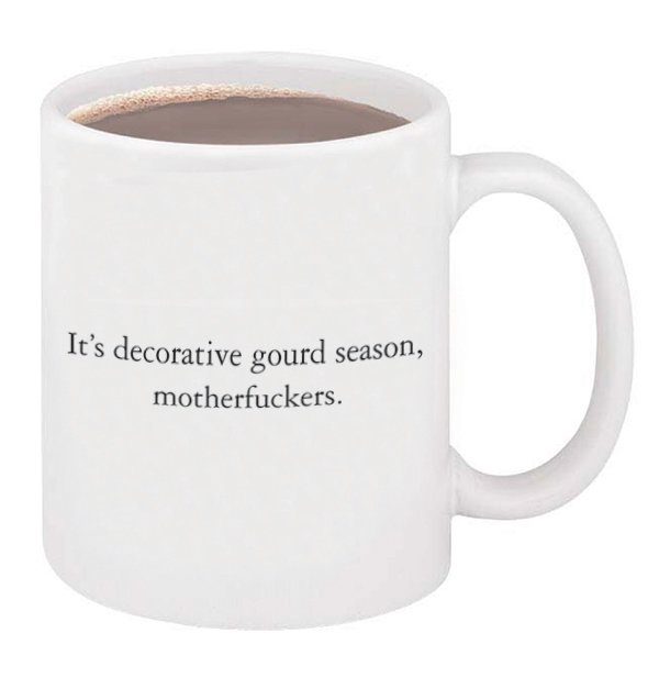 It S Decorative Gourd Season Motherfuckers Mug The Mcsweeney S Store