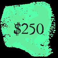$250 McSweeney's Membership
